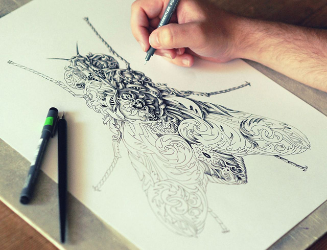 Incredibly Intricate Renaissance-Style Insect Drawings by Alex Konahin