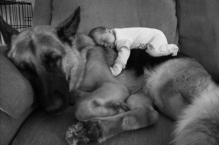 30 Adorable Photos Proving That Your Kids Need A Dog