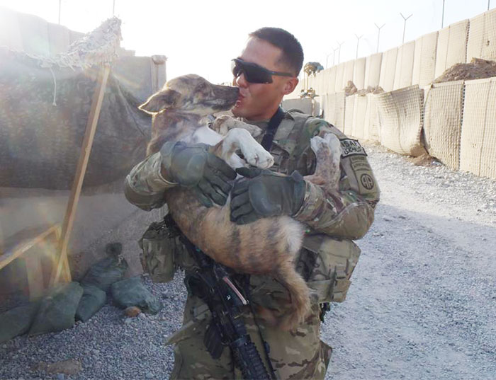 57 Soldiers And Pets Who Became Best Friends Overseas