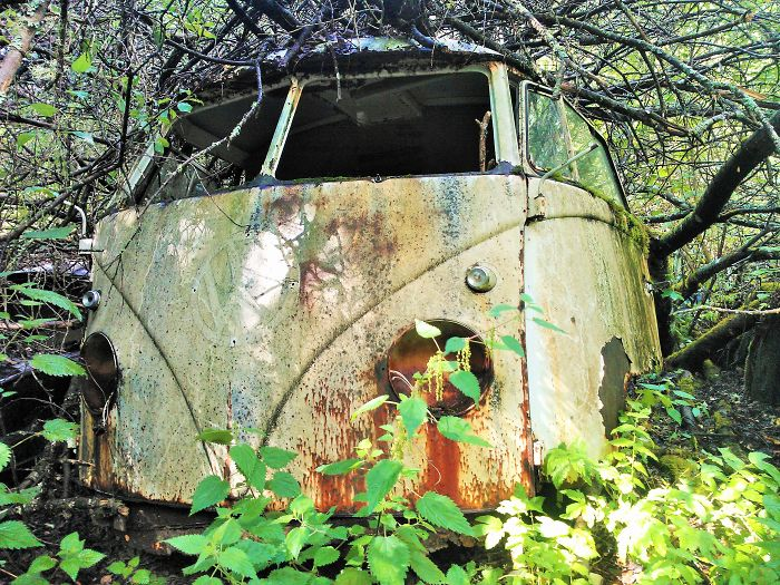 Hundreds Of Classic Abandoned Cars Hidden In Swedish Forest