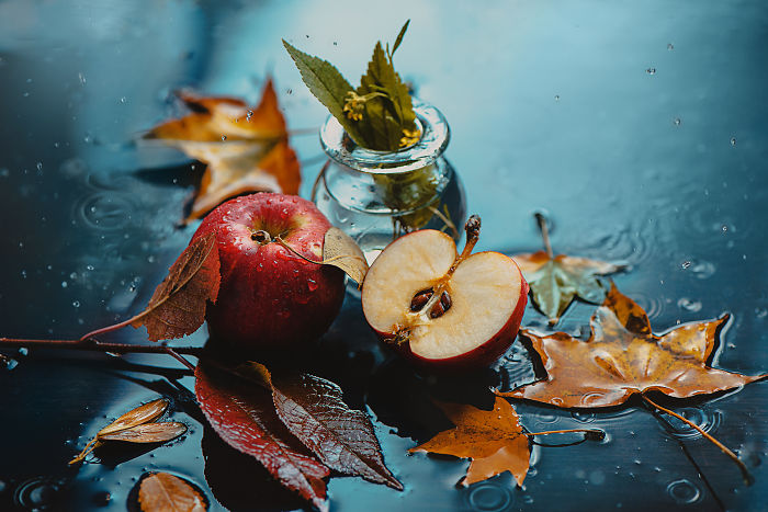 I Illustrate Moments Of Autumn And Rain With Still-Life Photography