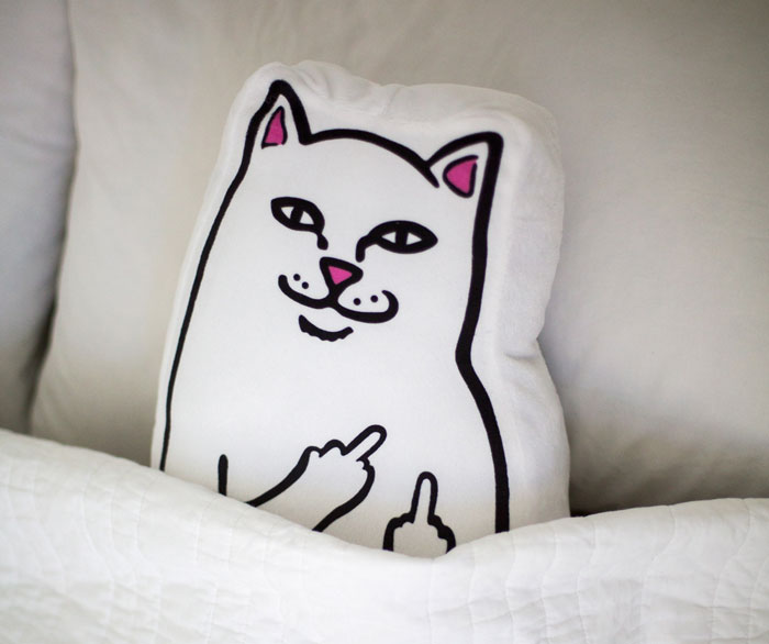 Rip N Dip Cat Pillow Will Make Sure You Never Sleep Alone Again