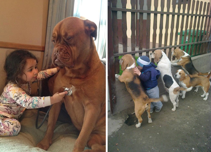 129 Heartwarming Photos Proving That Your Kids Need A Pet