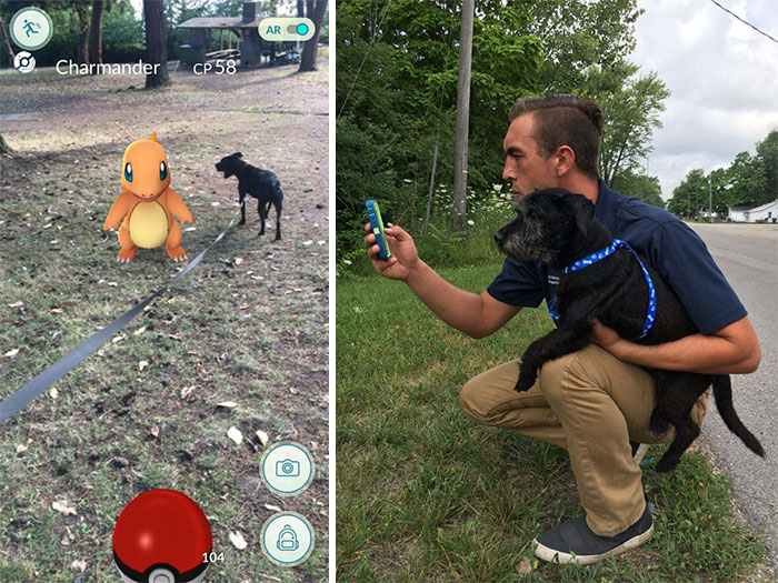 When This Animal Shelter Asked Pokémon Go Players To Walk Their Dogs, They Didn't Expect This