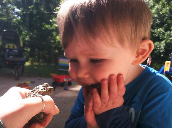 My Son Seeing A Toad For The First Time