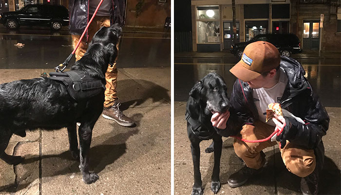 Terminally Sick Dog Insists On Taking A Walk At 1:30, Owner Knows Exactly Where To Take Him