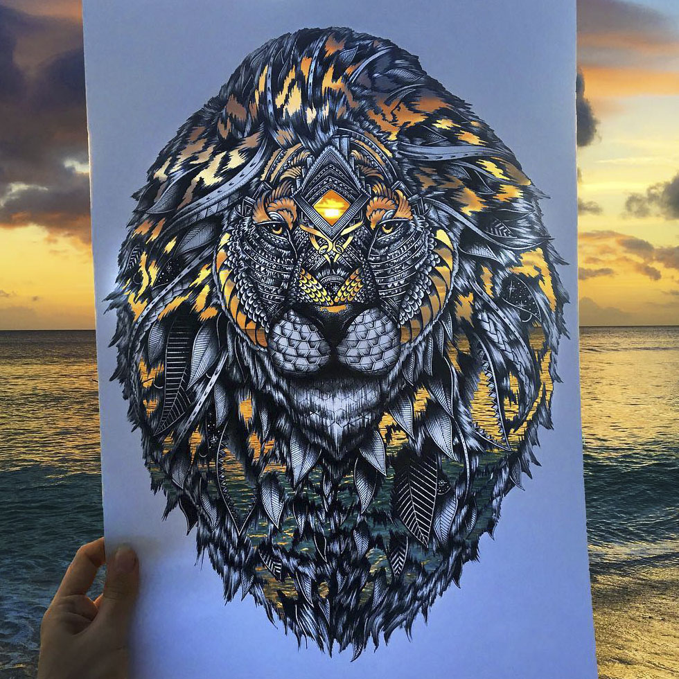 41 Incredibly Detailed Animal Drawings By Faye Halliday