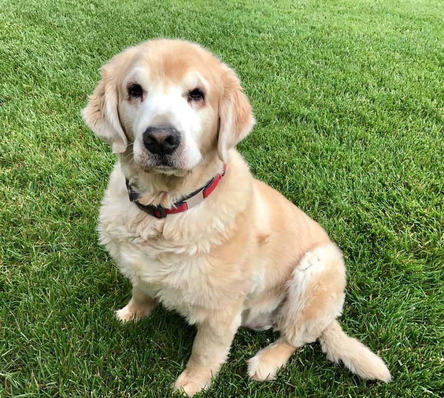 Exeter, California Murphy 11 Years Old