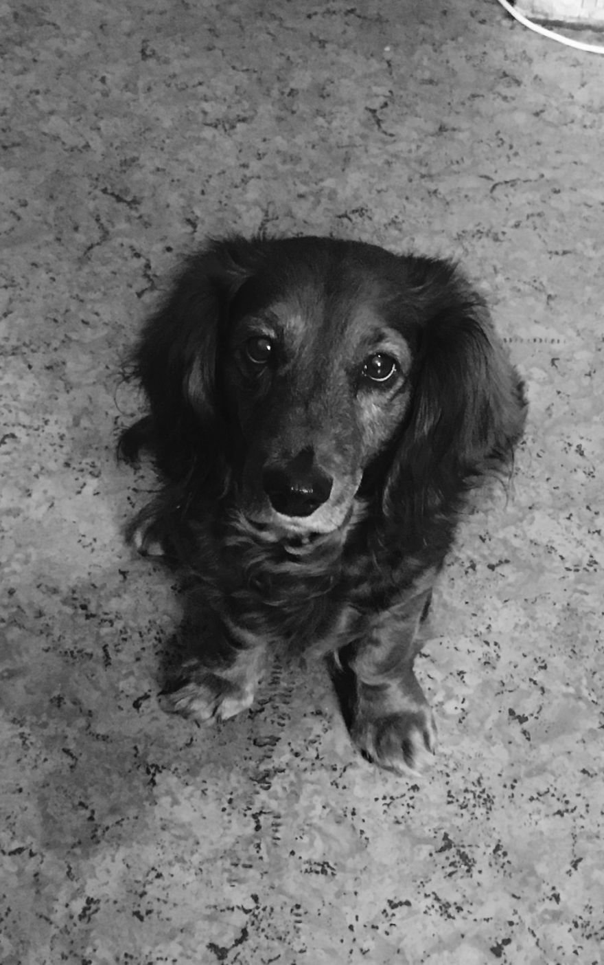 Lada, 13 Years Old, Moscow, Russia