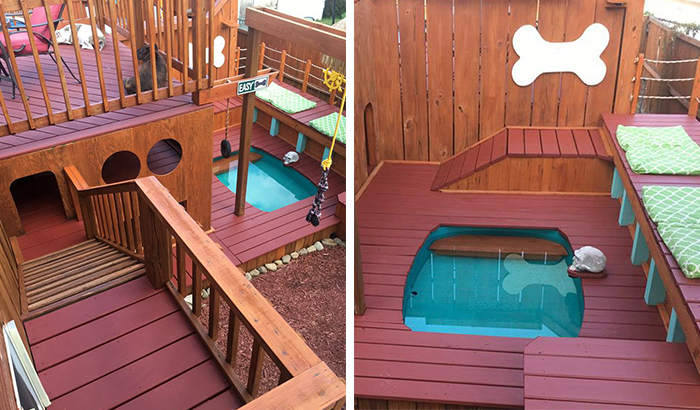 Dog Owner Transforms His Backyard Into A Large Playground With Private Pool For His 4 Dogs
