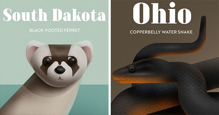 These Nature Posters Show The Most Endangered Species In Each US State