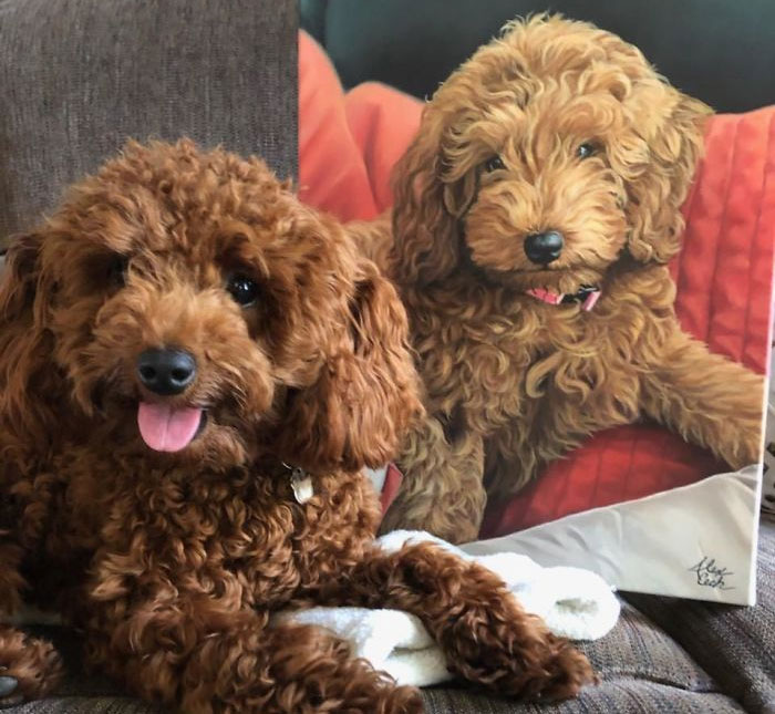 I Paint Custom Pet Portraits And Seeing Them With Their Paintings Is Definitely The Best Thing (11 Pics)