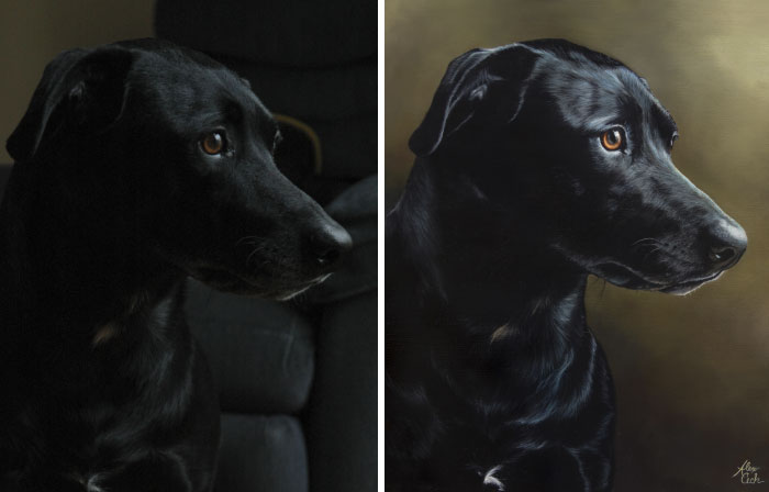 I Paint Pets From Photos, Here Are 13 Of My Favorite Before And Afters