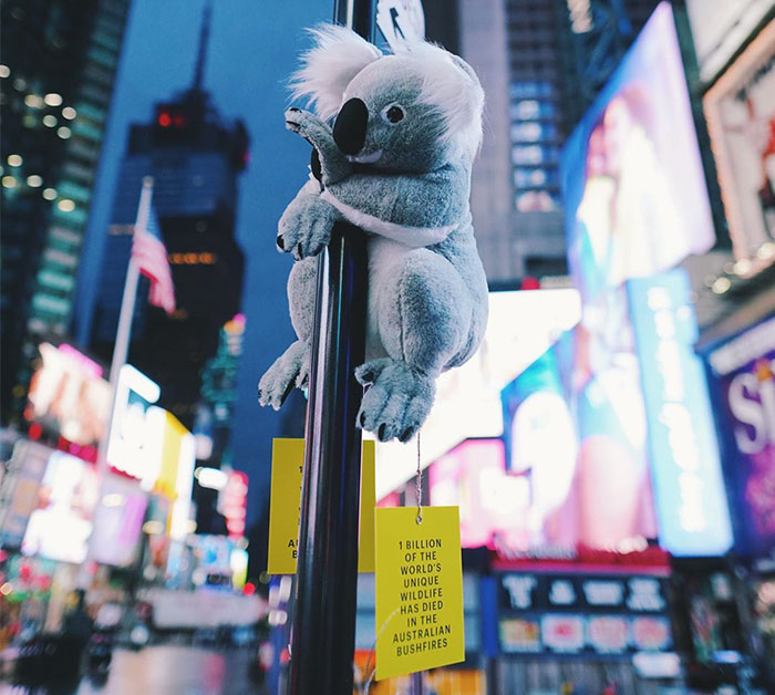 New York City Is Filled With Cute Stuffed Koalas Encouraging People To Donate To Australia (23 Pics)