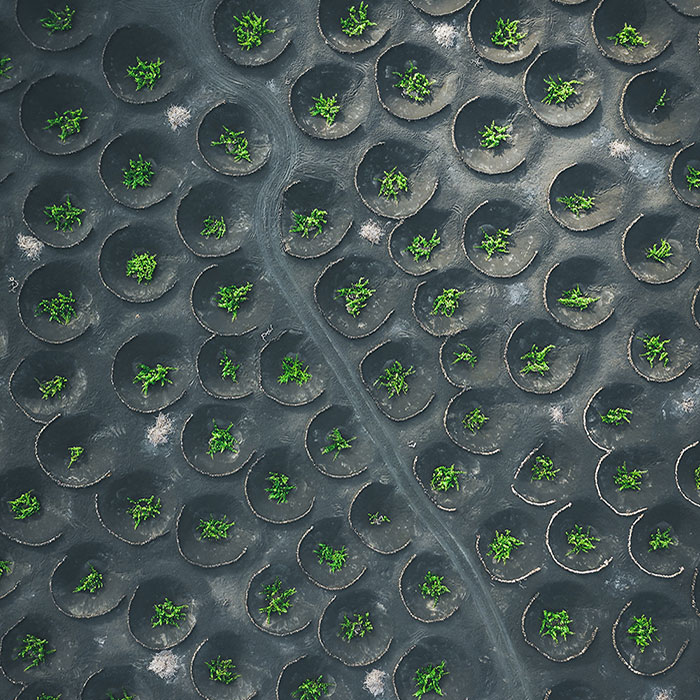 12 Earth Patterns Captured From Above With My Drone