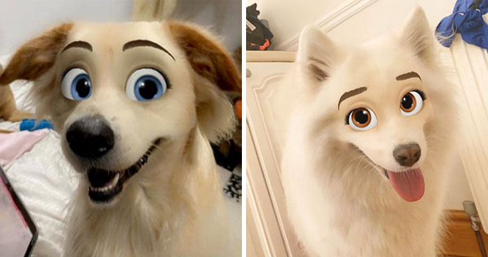 This New Snapchat Filter Makes Your Dog Look Like A Disney Character And Here Are 30 Of The Best Results