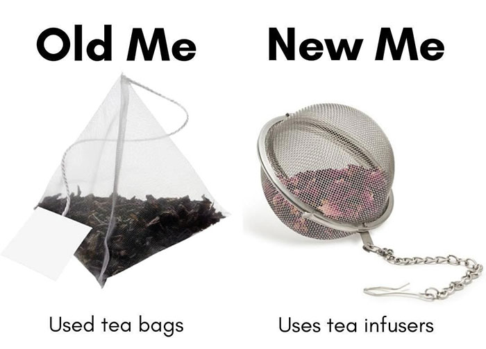 50 'Old Me vs. New Me' Memes That Will Help You Reduce Waste