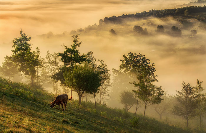 I Spent Summer In My Hometown Maramures, Which Looks Like A Fairy Tale (28 Pics)