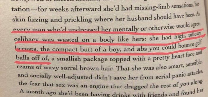 Wish I Had Pillowy Breasts! Taken From Ben Fountain's Brief Encounters With Che Guevara
