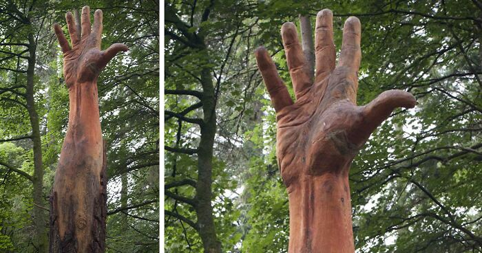 Storm-Damaged Tree In Wales Gets Transformed Into A 50 Ft Hand Worth $16,000