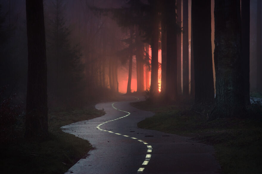I Photograph Misty Forest Roads