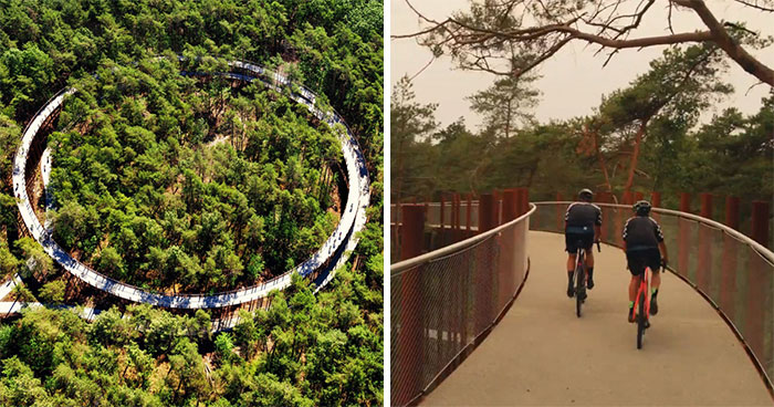 This 360-Degree Pathway In Belgium Lets You Cycle Through The Trees 32 Ft Above The Ground