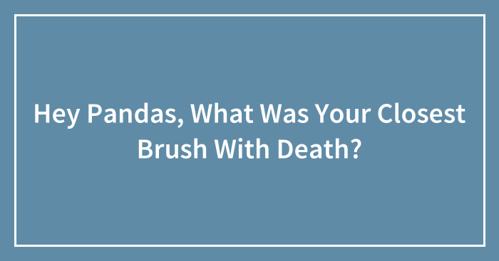 Hey Pandas, What Was Your Closest Brush With Death?