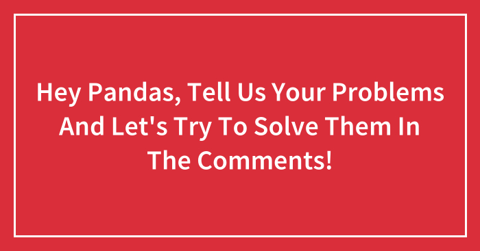 Hey Pandas, Tell Us Your Problems And Let's Try To Solve Them In The Comments!