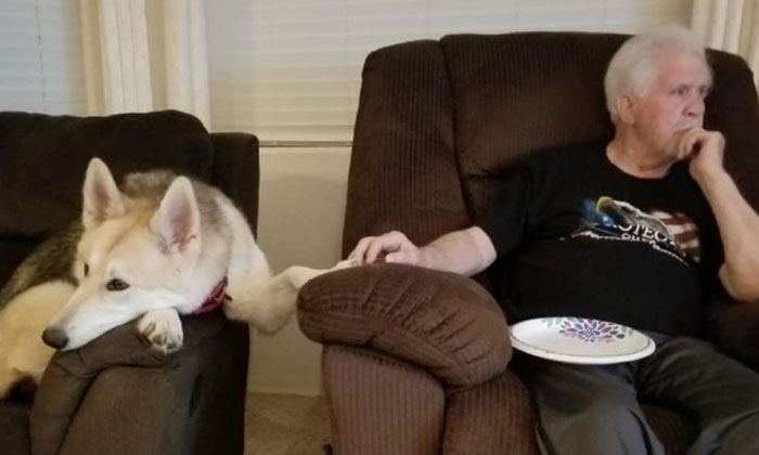 30 Of The Most Wholesome Responses To The 'Didn't Want A Dog' Challenge