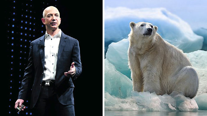 These Are The 16 Organizations That Will Be Receiving The First $800 Million From The Bezos Earth Fund