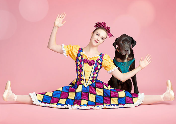 The Muttcracker: Ballet Dancers Dance With Dogs And Cats Who Are Waiting To Get Adopted (50 Pics)