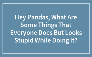 Hey Pandas, What Are Some Things That Everyone Does But Looks Stupid While Doing It?