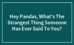 Hey Pandas, What's The Strangest Thing Someone Has Ever Said To You?