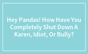 Hey Pandas! How Have You Completely Shut Down A Karen, Idiot, Or Bully?