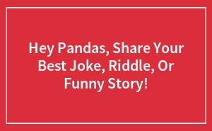 Hey Pandas, Share Your Best Joke, Riddle, Or Funny Story!