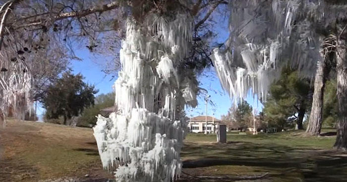 Sprinkler Creates A Frozen Wonderland On This Golf Course After Temperatures Suddenly Drop