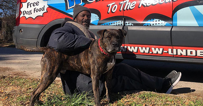 Homeless Man Rushes Into A Burning Animal Shelter – Saves Every Animal