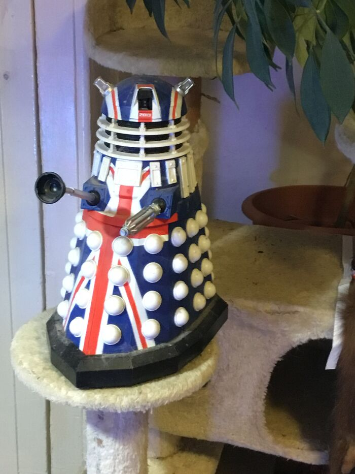 My Poor Unloved, Disabled Dalek. One Of The Cat Tribe Ran Off With It's Eye Stalk And I Can't Find It