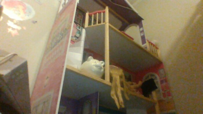 This Doll House I Never Play With