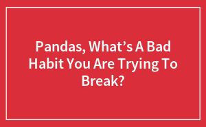 Pandas, What's A Bad Habit You Are Trying To Break?