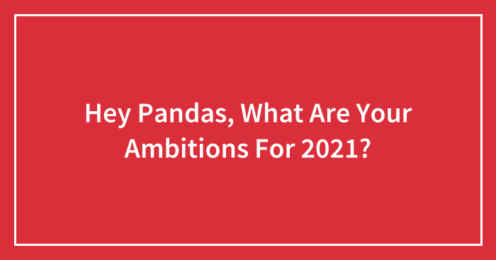 Hey Pandas, What Are Your Ambitions For 2021?