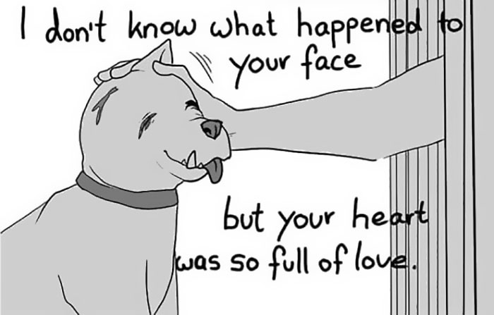 Artist Who Made People Cry With Her Grim Reaper Animal Comics Is Back, And This Time It's About Paying Tribute To Shelter Staff