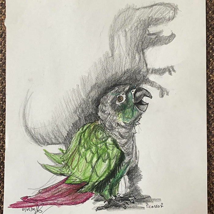 I Draw Pet Portraits On Request And Then Donate The Received Funds To Charity (70 Pics)