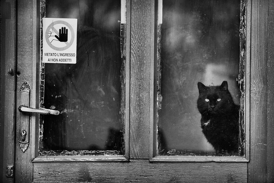 """Authorized Personnel Only. You Get That Human?"""