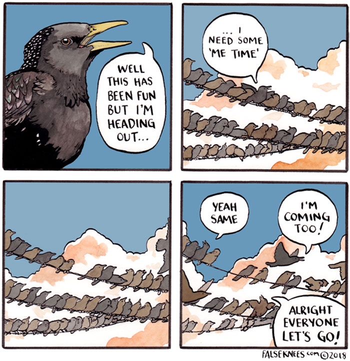 30 Funny Animal Comics That Show What Is Really Happening Out In The Wild By 'False Knees'