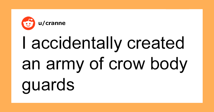Woman Shares How Feeding And Creating An 'Army Of Crows' Near Her House Possibly Saved This Neighbor's Life