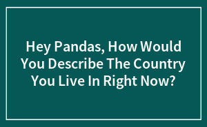 Hey Pandas, How Would You Describe The Country You Live In Right Now?