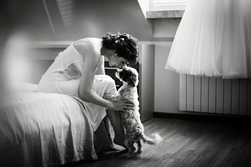 One Sweet Moment Of Love Before This Puppy's Human Becomes A Bride