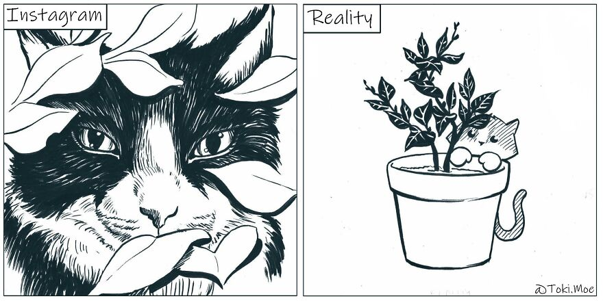 Relatable Comics That Sum Up The Simple Beauty Of Living With Our Pets!
