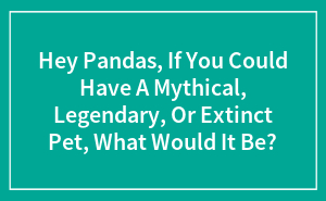 Hey Pandas, If You Could Have A Mythical, Legendary, Or Extinct Pet, What Would It Be?